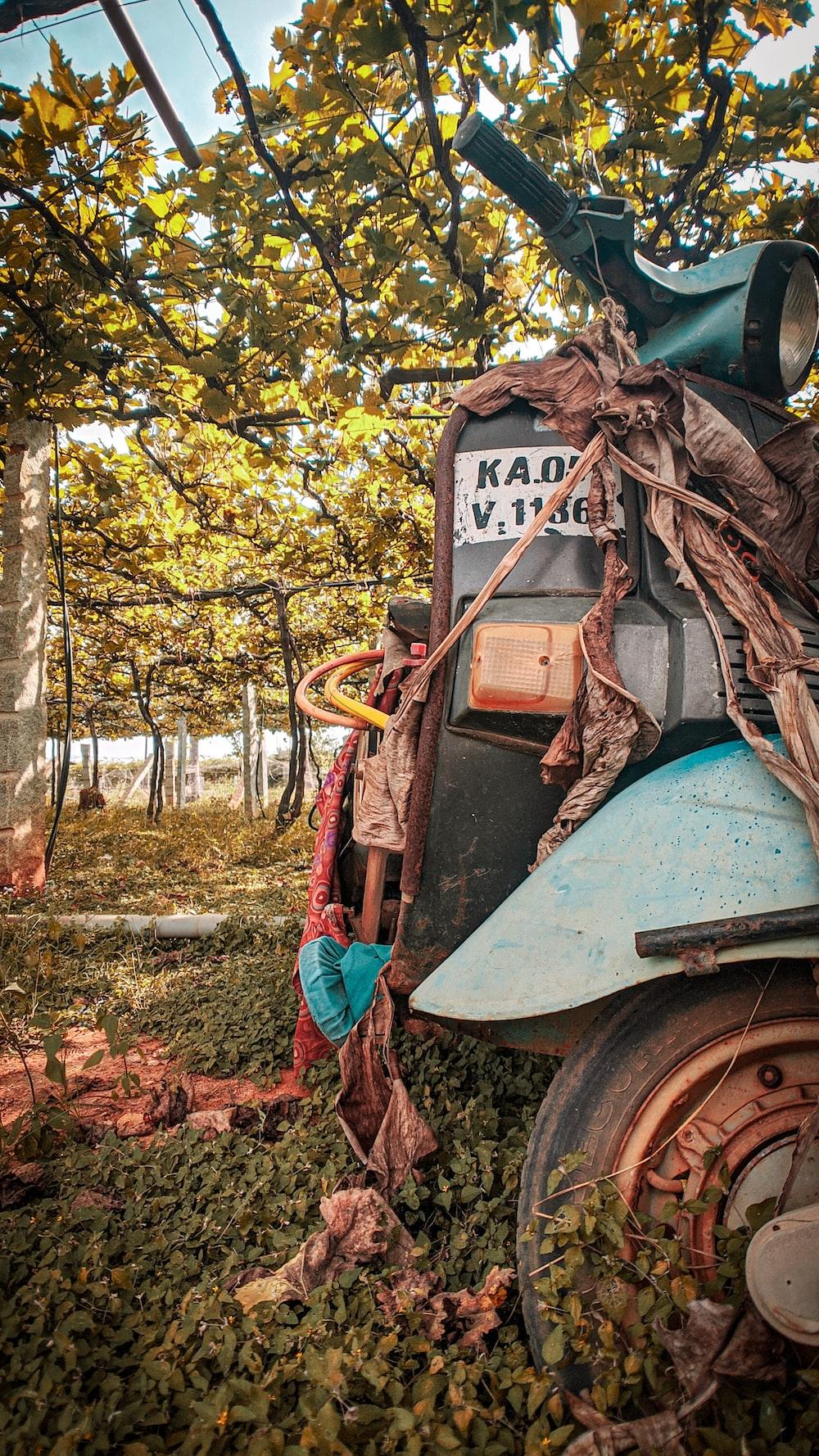 tractor in garden