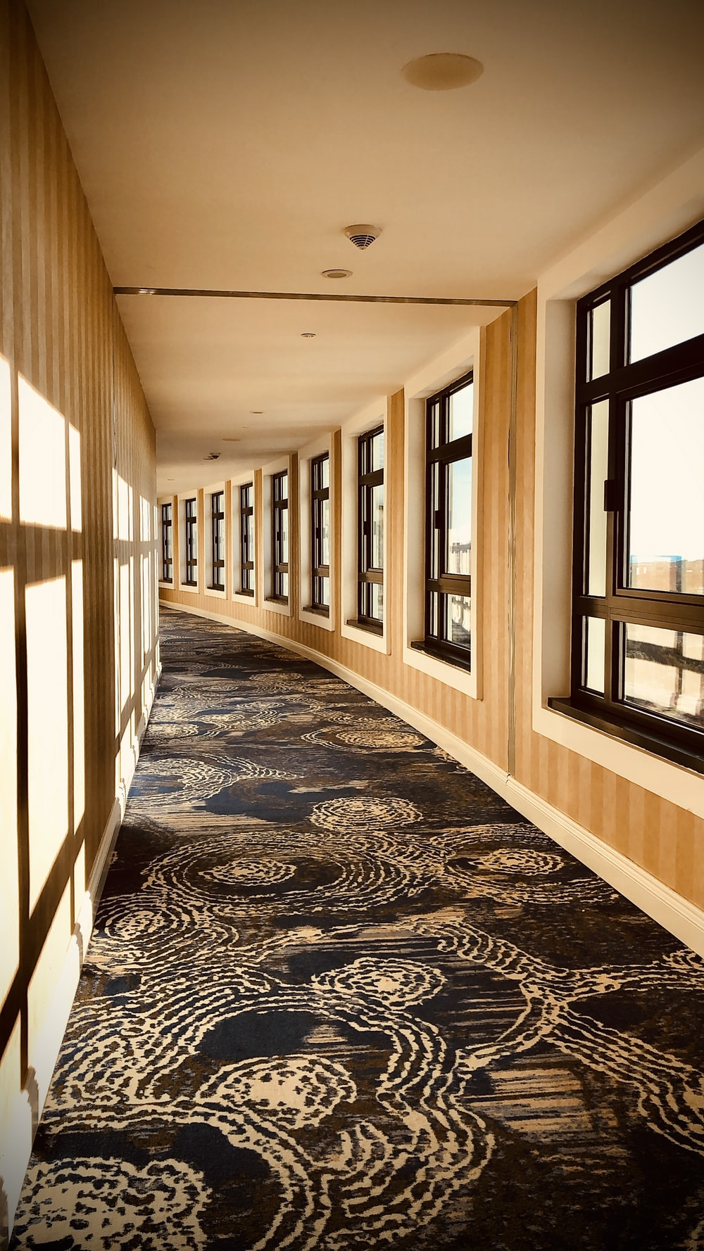 empty brown and black hallway