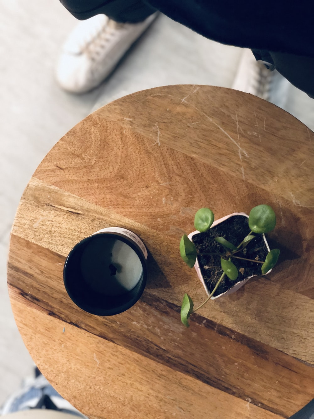 green-leafed plant with white vase on brown table