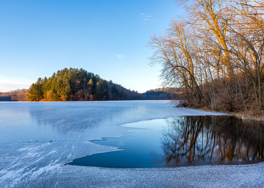 icy body of water near trees during day