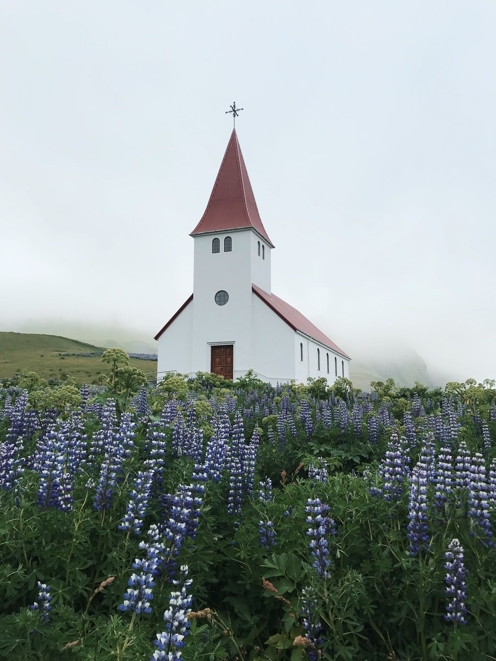 white and red church surrounded by purple flowers during daytime