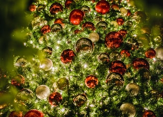 lighted red and green high-rise Christmas tree during night time