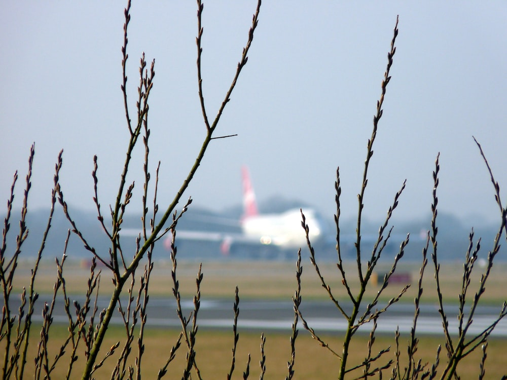 airplane at the airfield during day