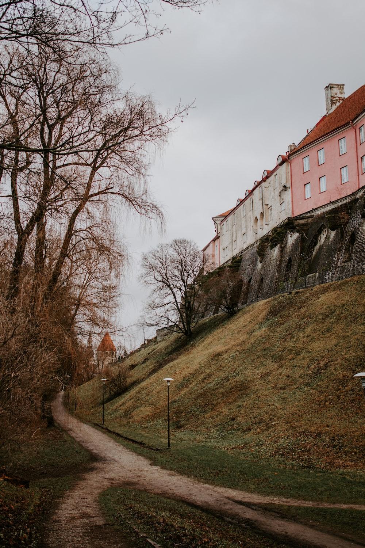 pathway beside buildings wall