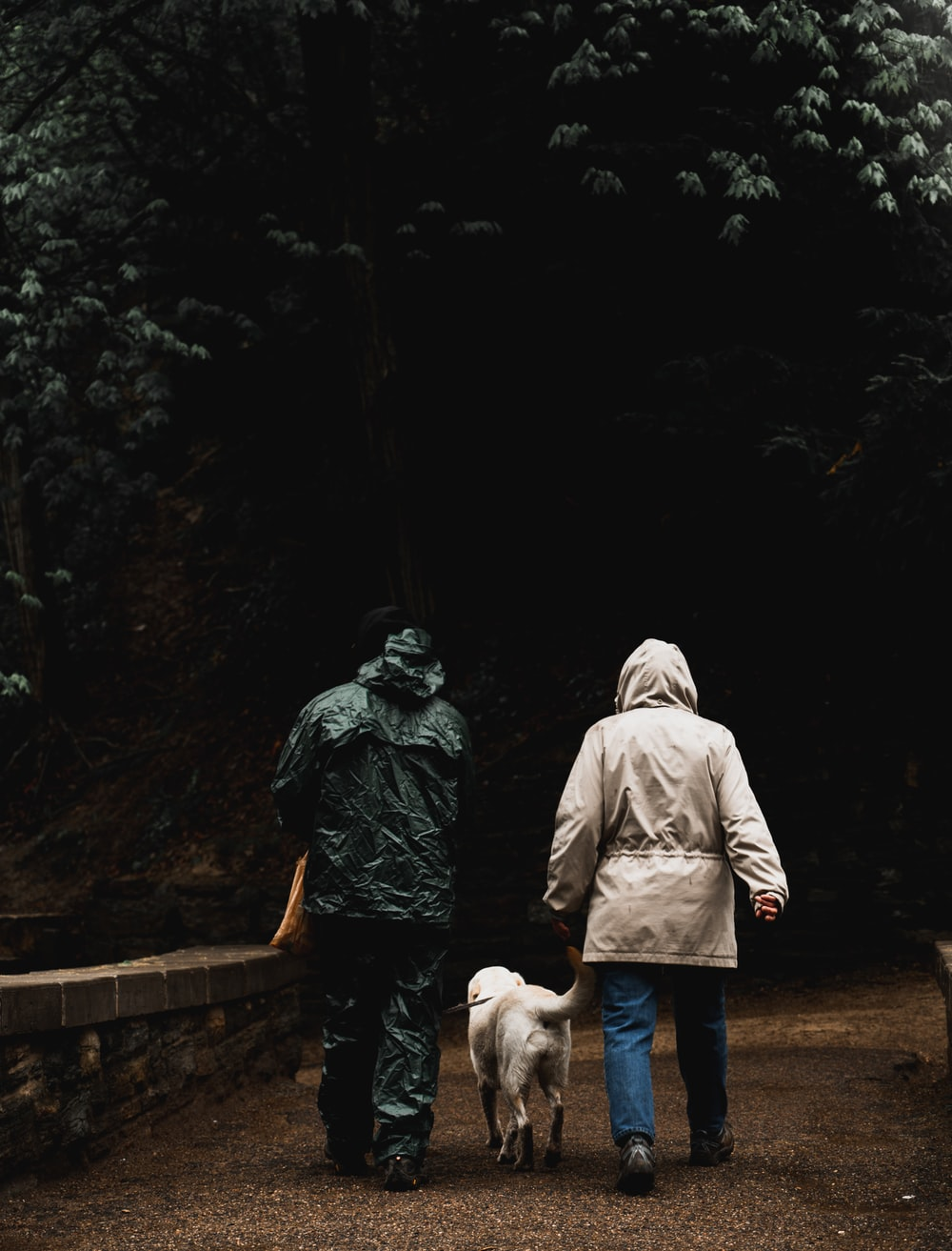 man and woman walking with dog