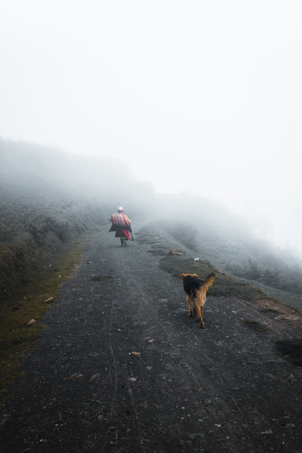 person on hill with fogs