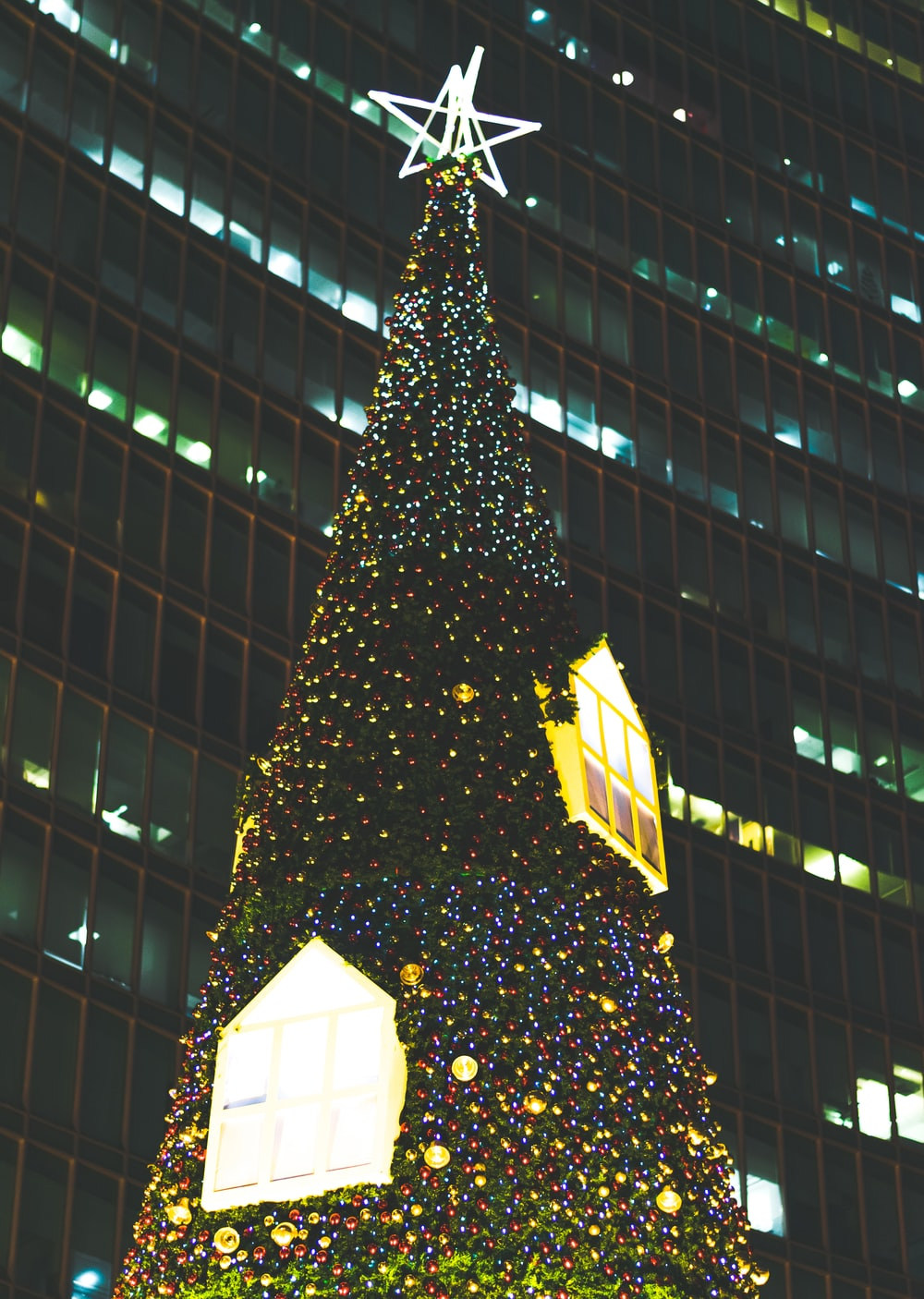 Lighted Christmas Tree Outside Building