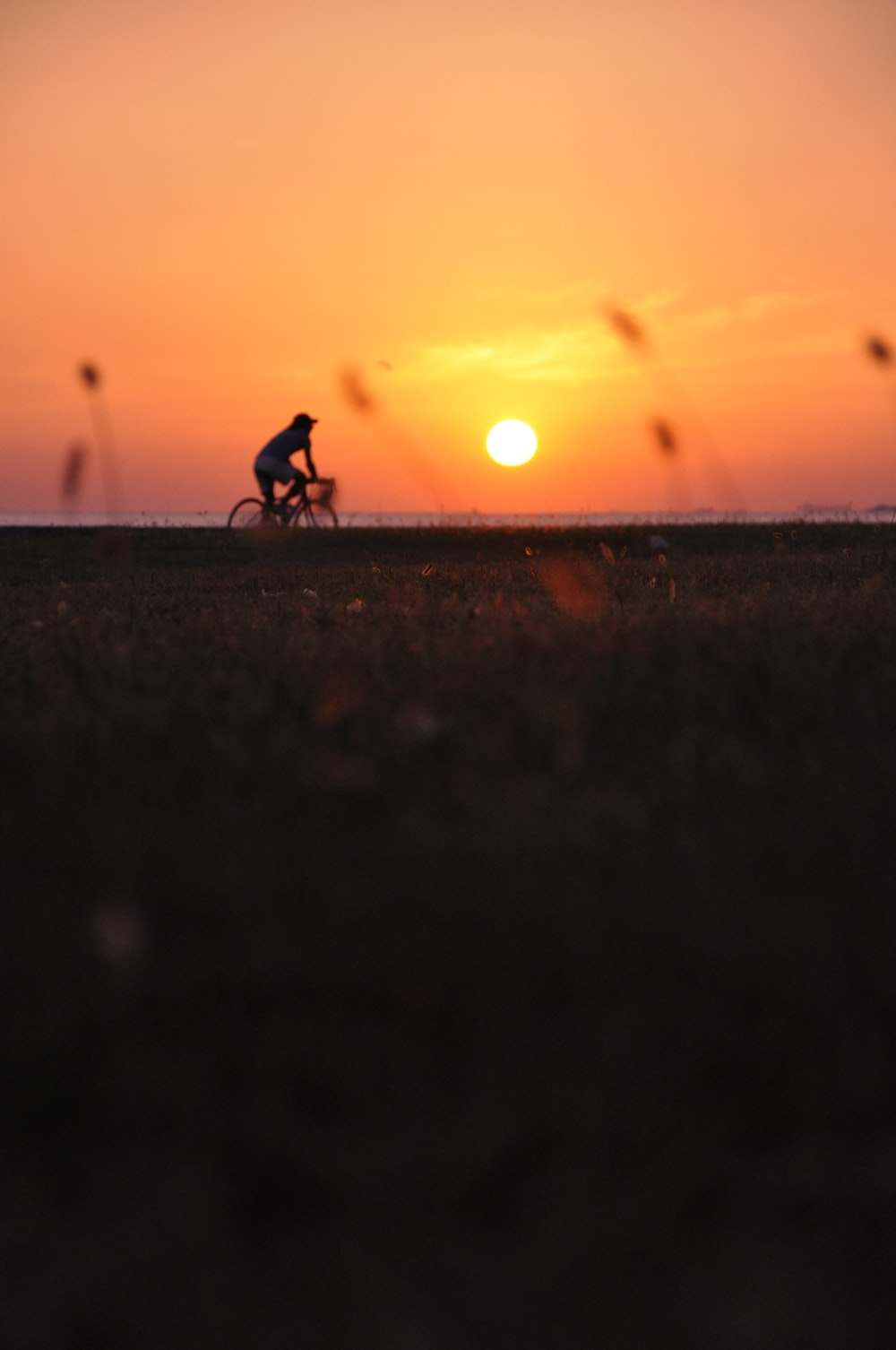 person driving bike during sunset