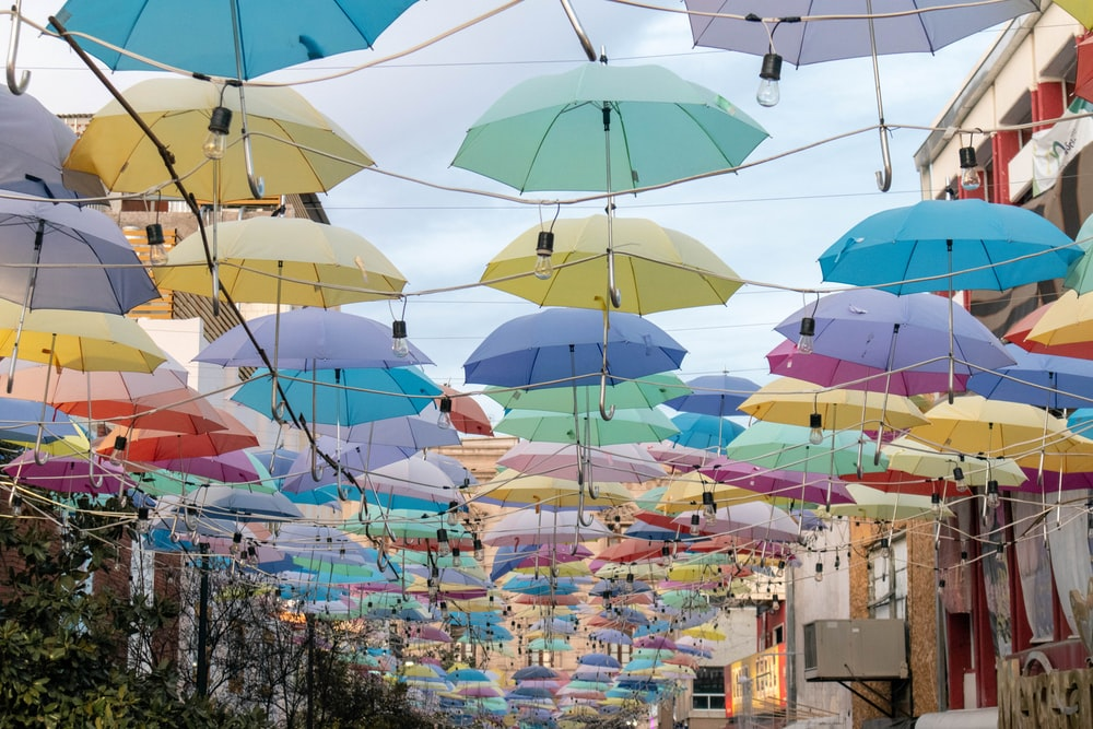 assorted-colored umbrella hanging near buildings