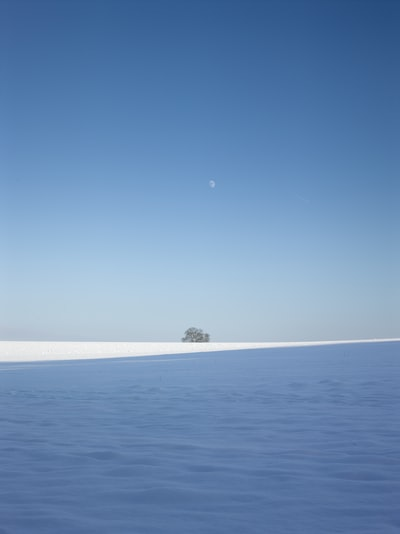 A tree on the snow covered field with the moon in line showing up during the freezeing winter day condition. The horizon is split by the shade of trees and forms a leading line on the snow. Looks like a technical painting to me.