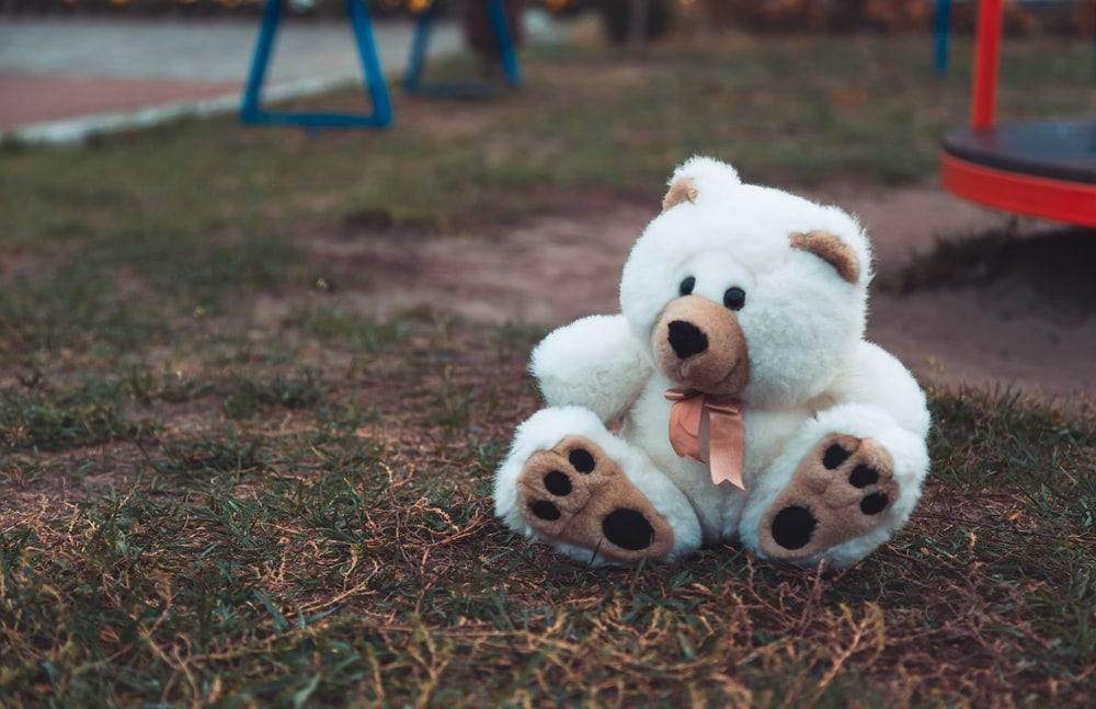white and brown bear plush toy on grass