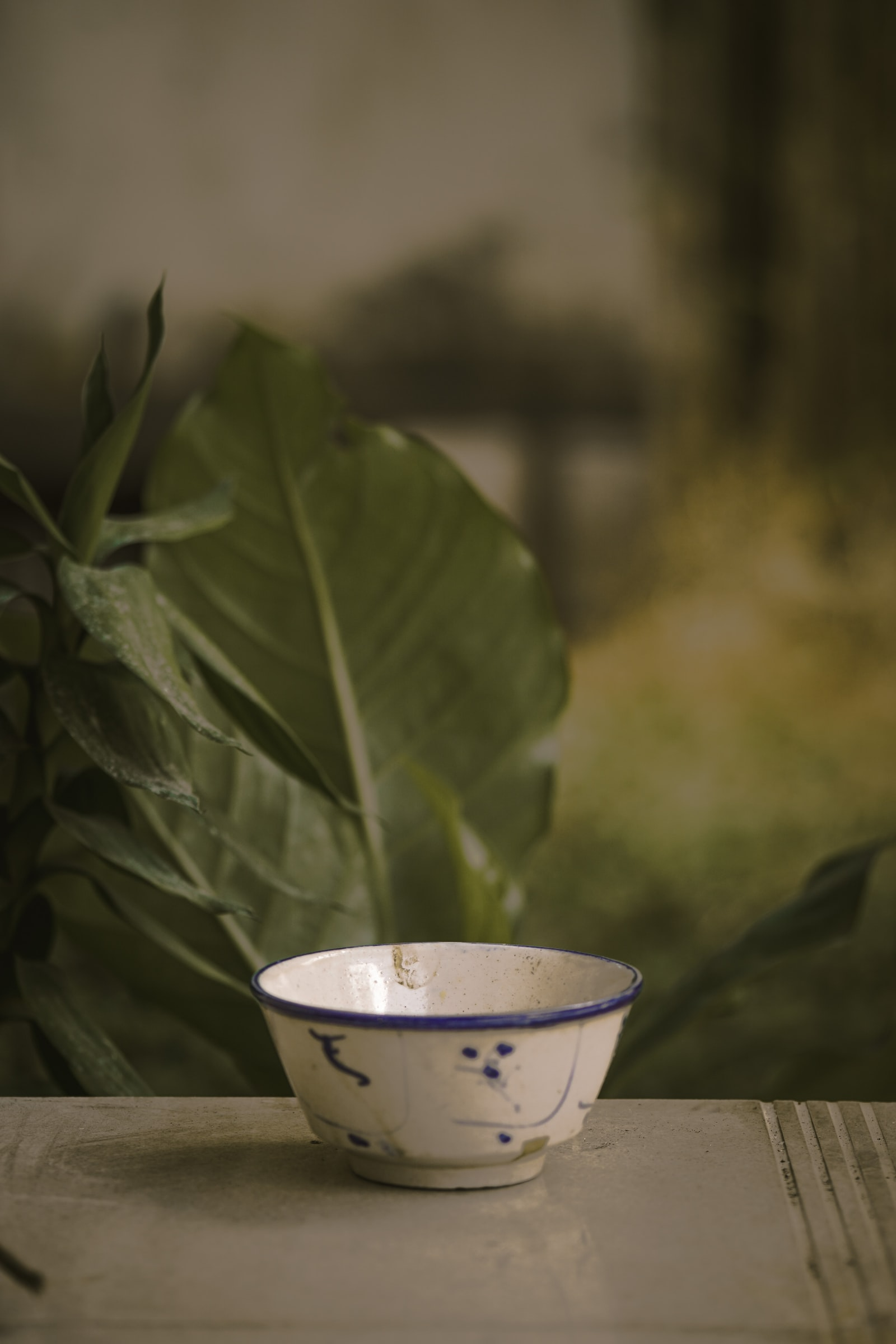 """Sony a6000 sample photo. """"White bowl"""" photography"""