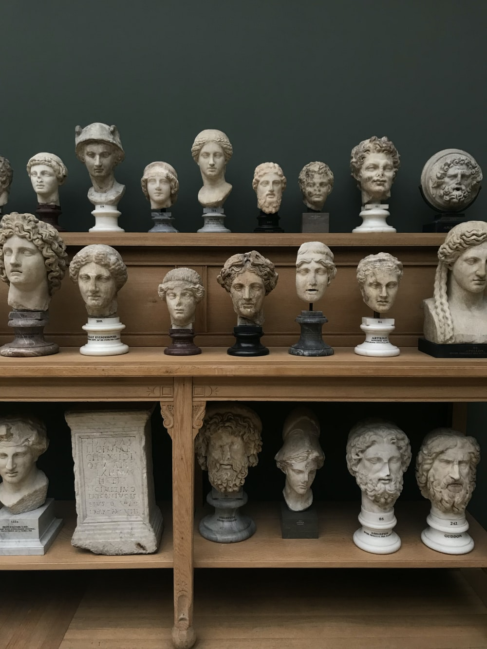 assorted head busts