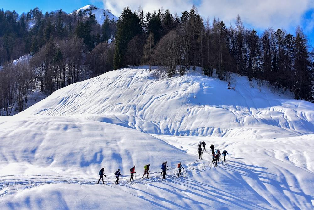 people walking on snow field beside trees