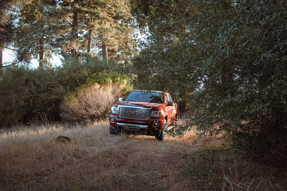 red pickup truck passing by a road in the forest