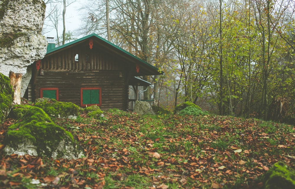 cabin near green trees during daytime
