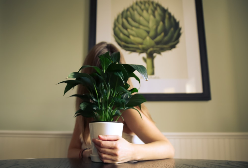 potted plant covering woman's face