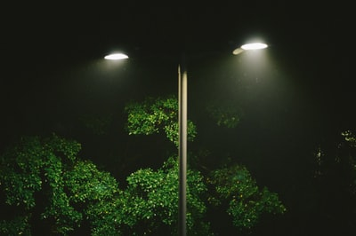 double lamppost turned on near trees post-impressionism zoom background