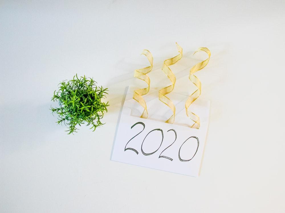 2020 letter beside green plant
