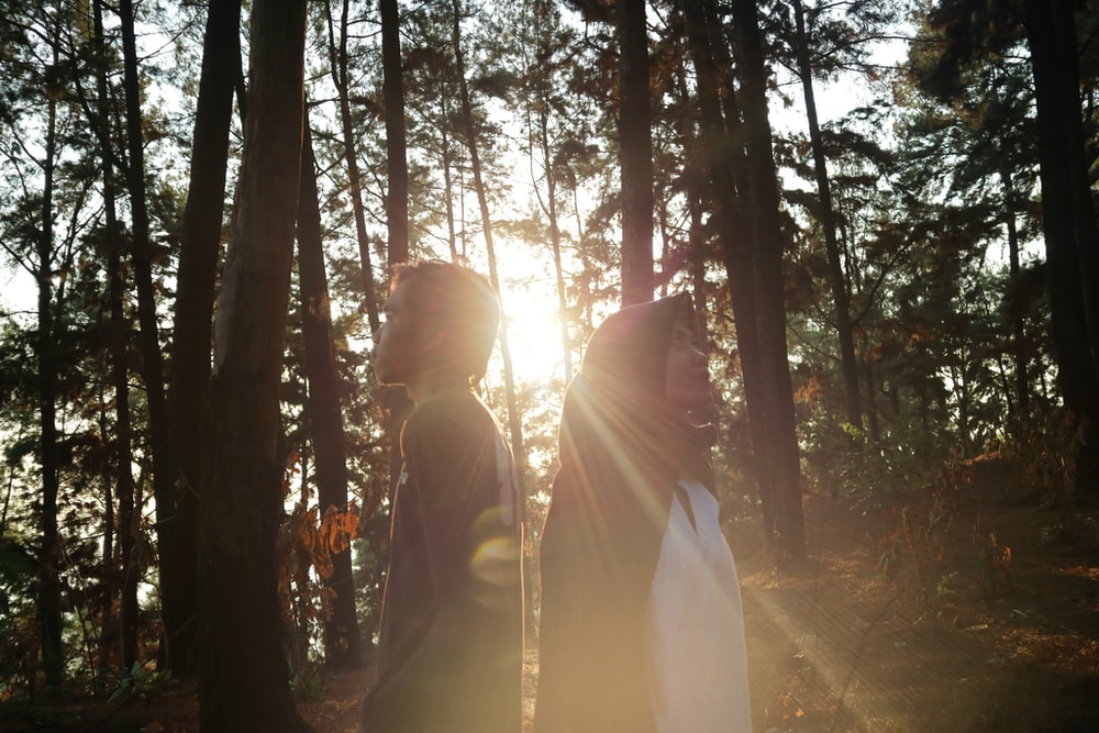 two persons near trees during day