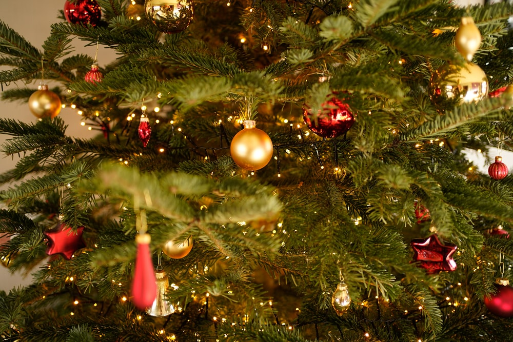 green pine tree with decorations