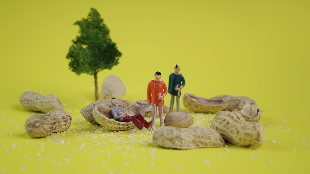 two men figures beside peanuts