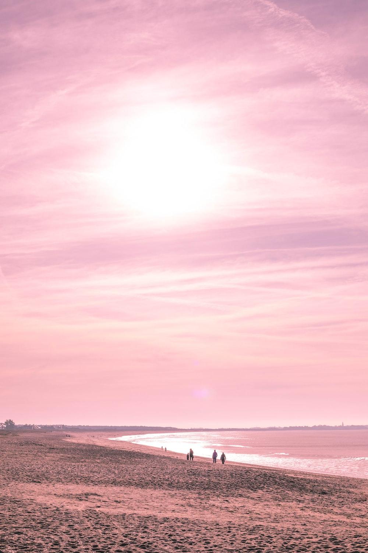 people walking along seashore during golden hour