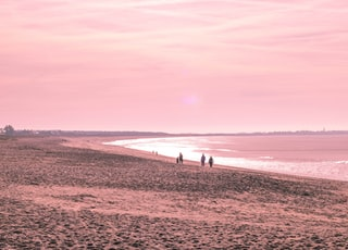 people walking along seashore during golden hour