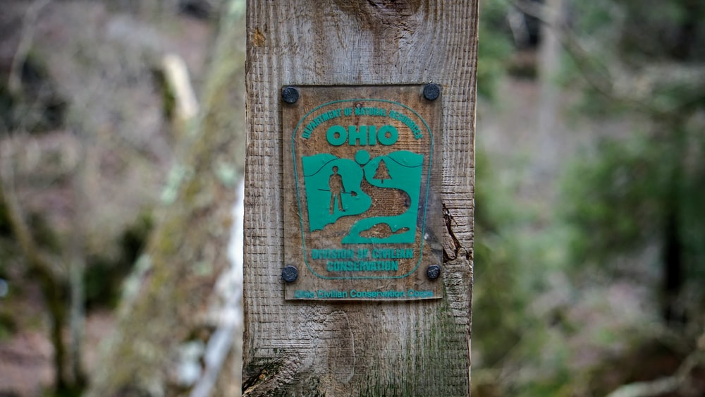 shallow focus photo of brown and teal signage
