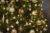 My Christmas Tree- my christmas tree stories