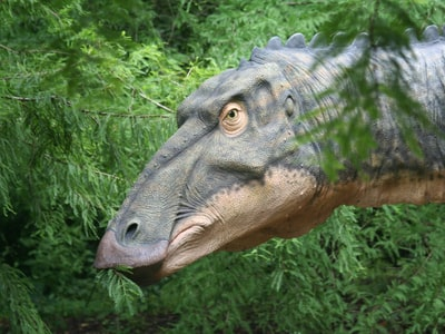 alternative text required here, the example image is a dinosaur-related photo from a dynamic API