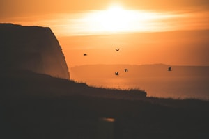 time-lapse photography of birds flying over mountain during golden hour