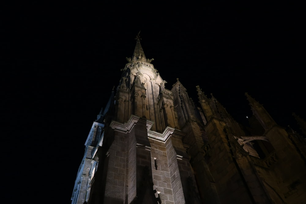 low-angle photography of a cathedral building