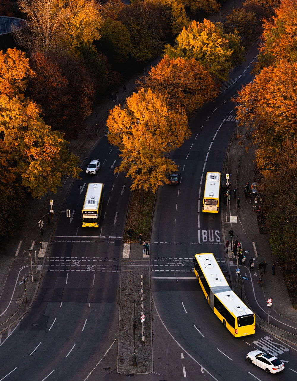 buses on road during daytime