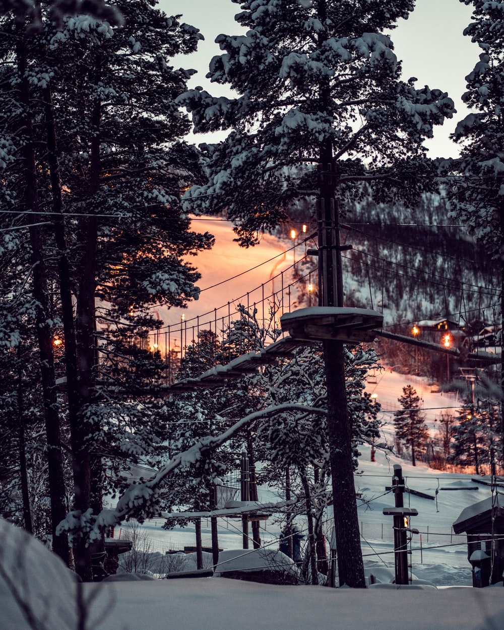 snow covered trees with bridges and houses
