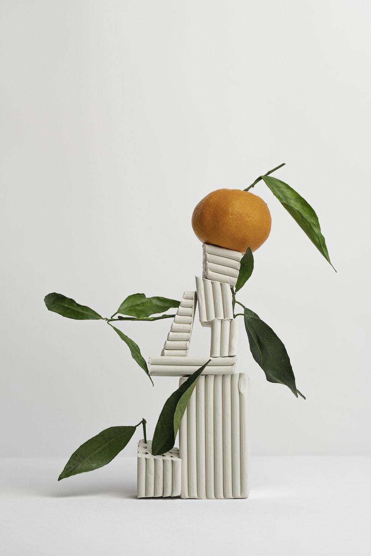 orange fruit on balancing fragments