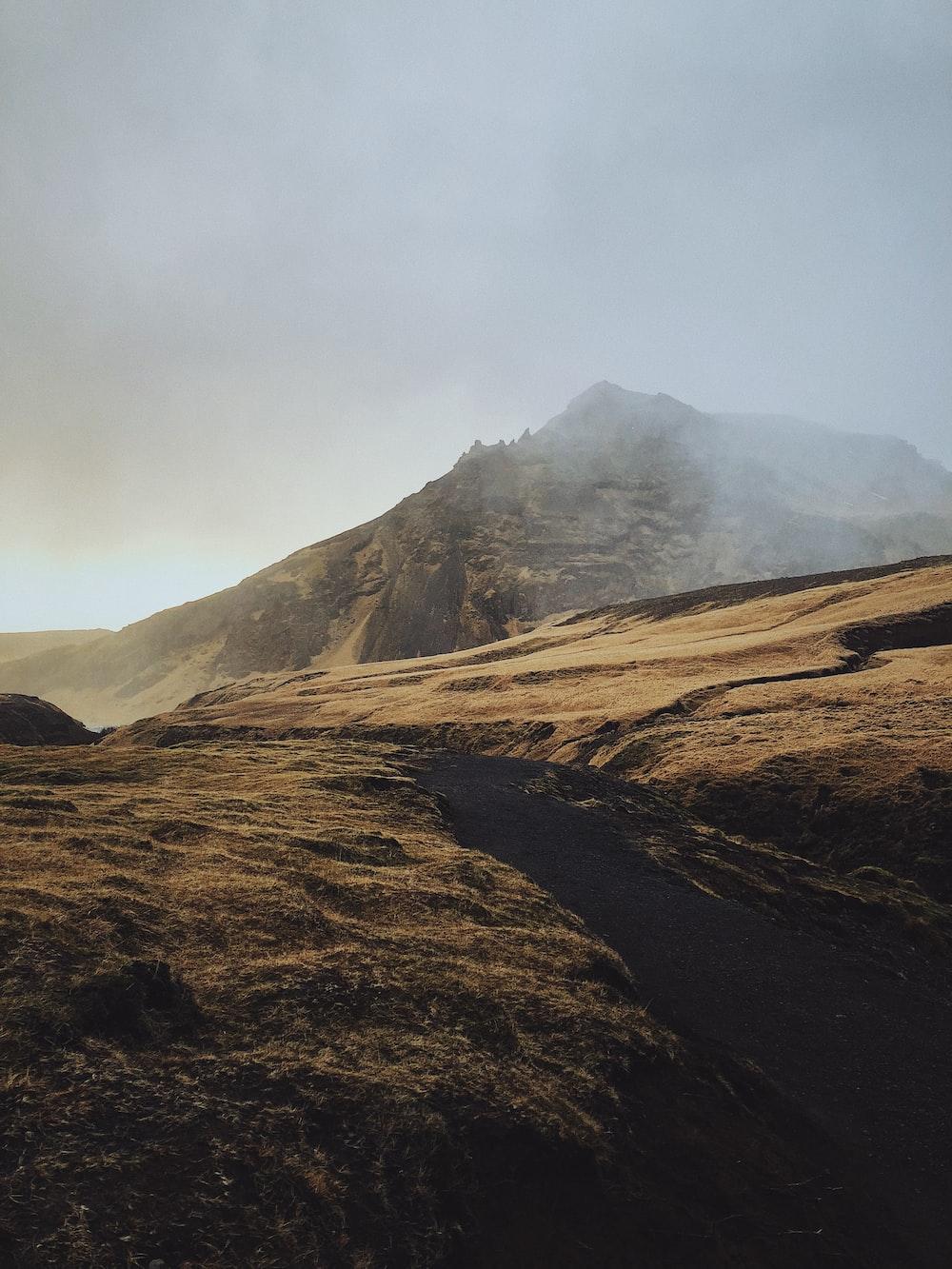 shallow focus photo of brown mountain