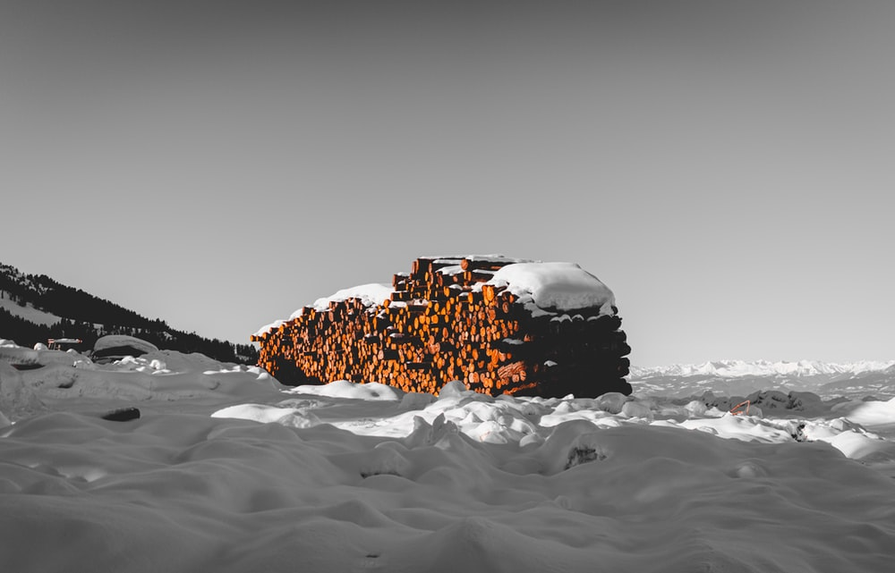 firewood cord covered with snow on snowfield during day