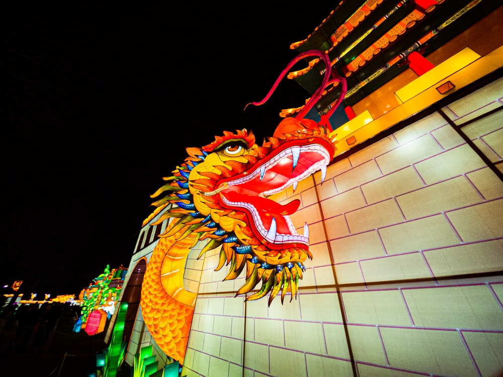 multicolored lighted Chinese dragon