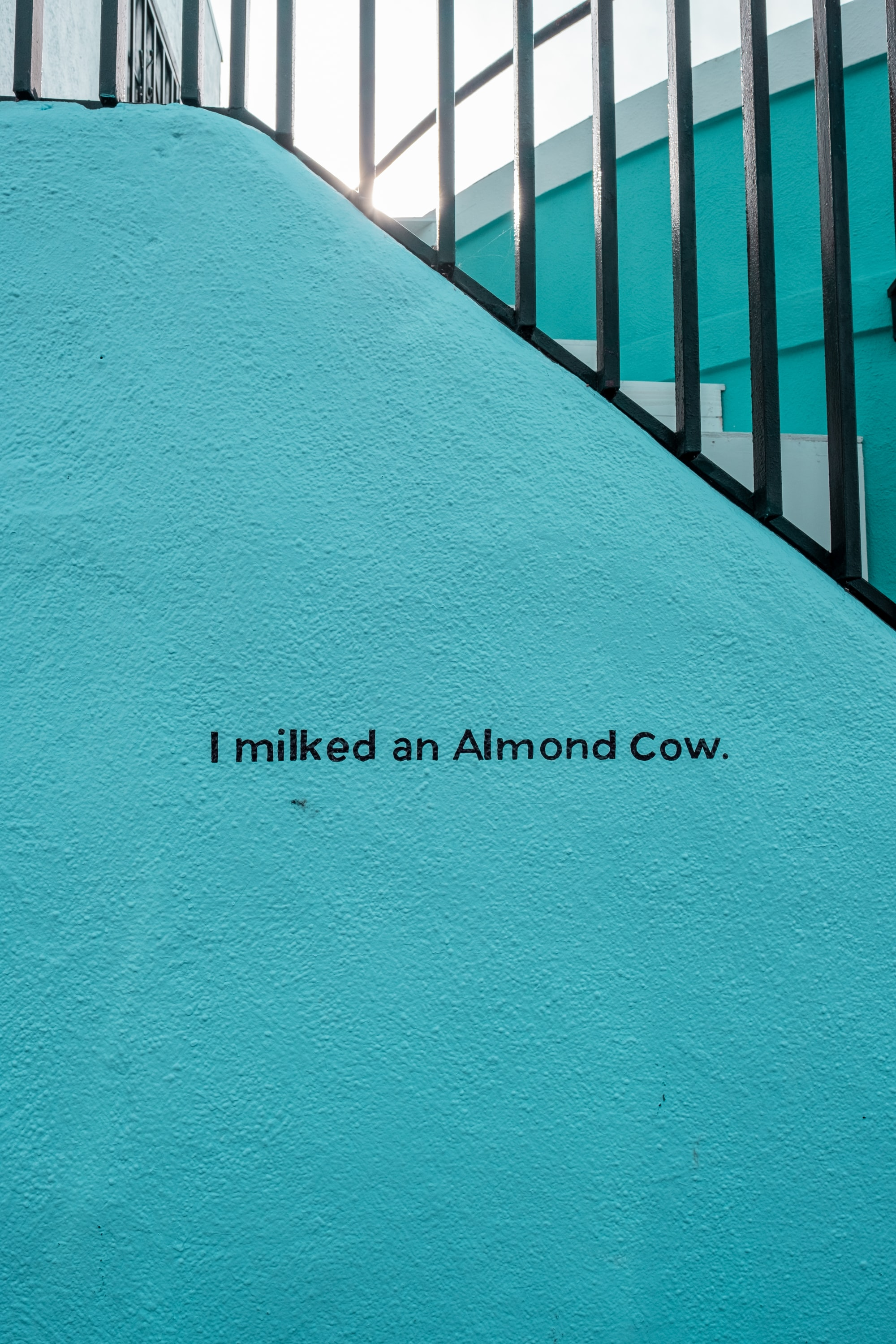 """I milked an almond cow"" on the side Almond Cow plant-based milk shop in Venice, CA."