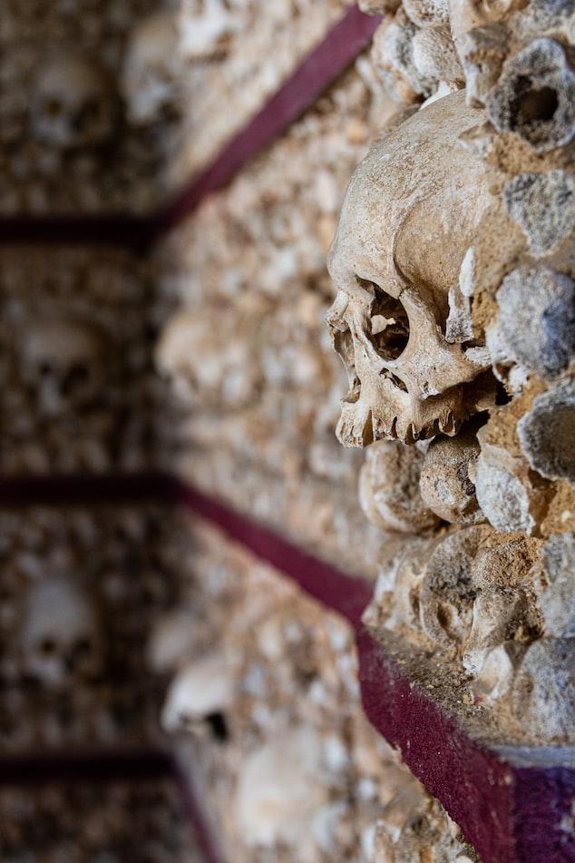 Primitive Roman remains