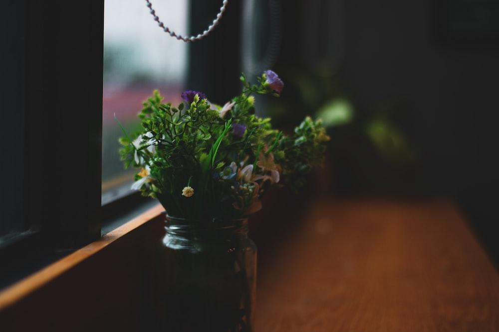 shallow focus photo of purple flowers beside window