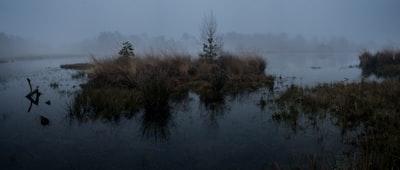 A gloomy misty morning