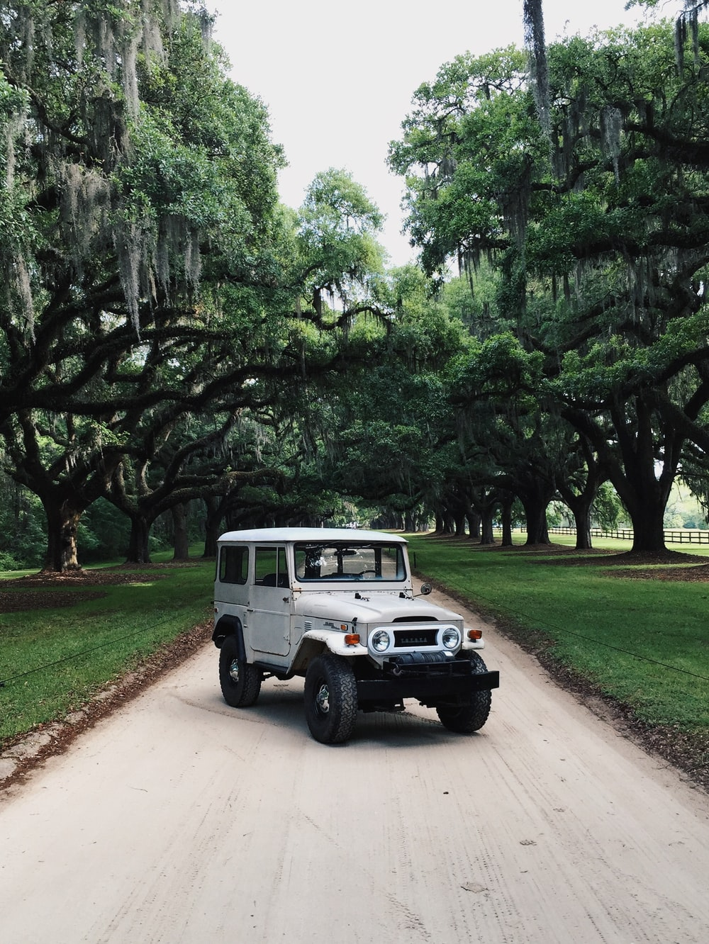 white Jeep SUV parking on road surrounded with green trees