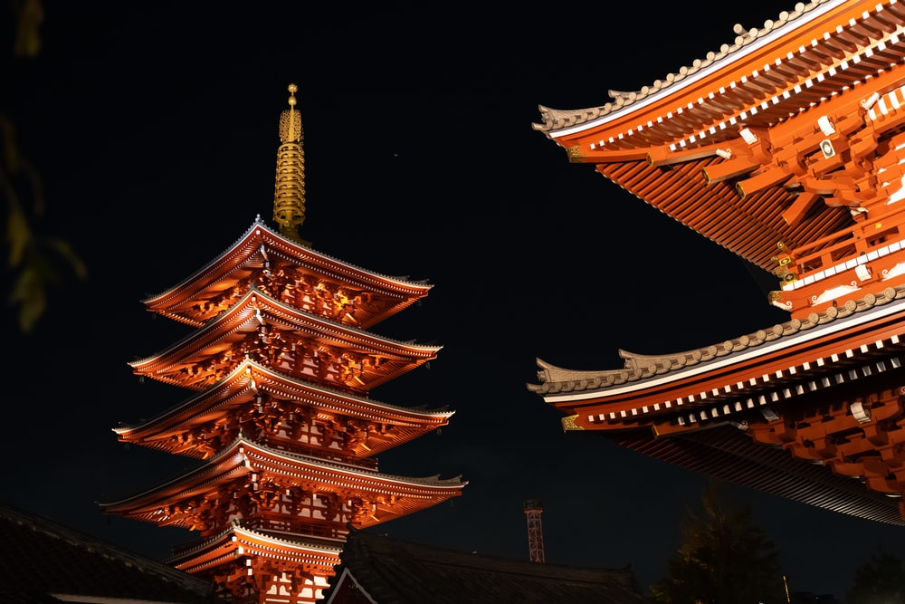 macro photography of Sensho-ji Temple, Minato during night time