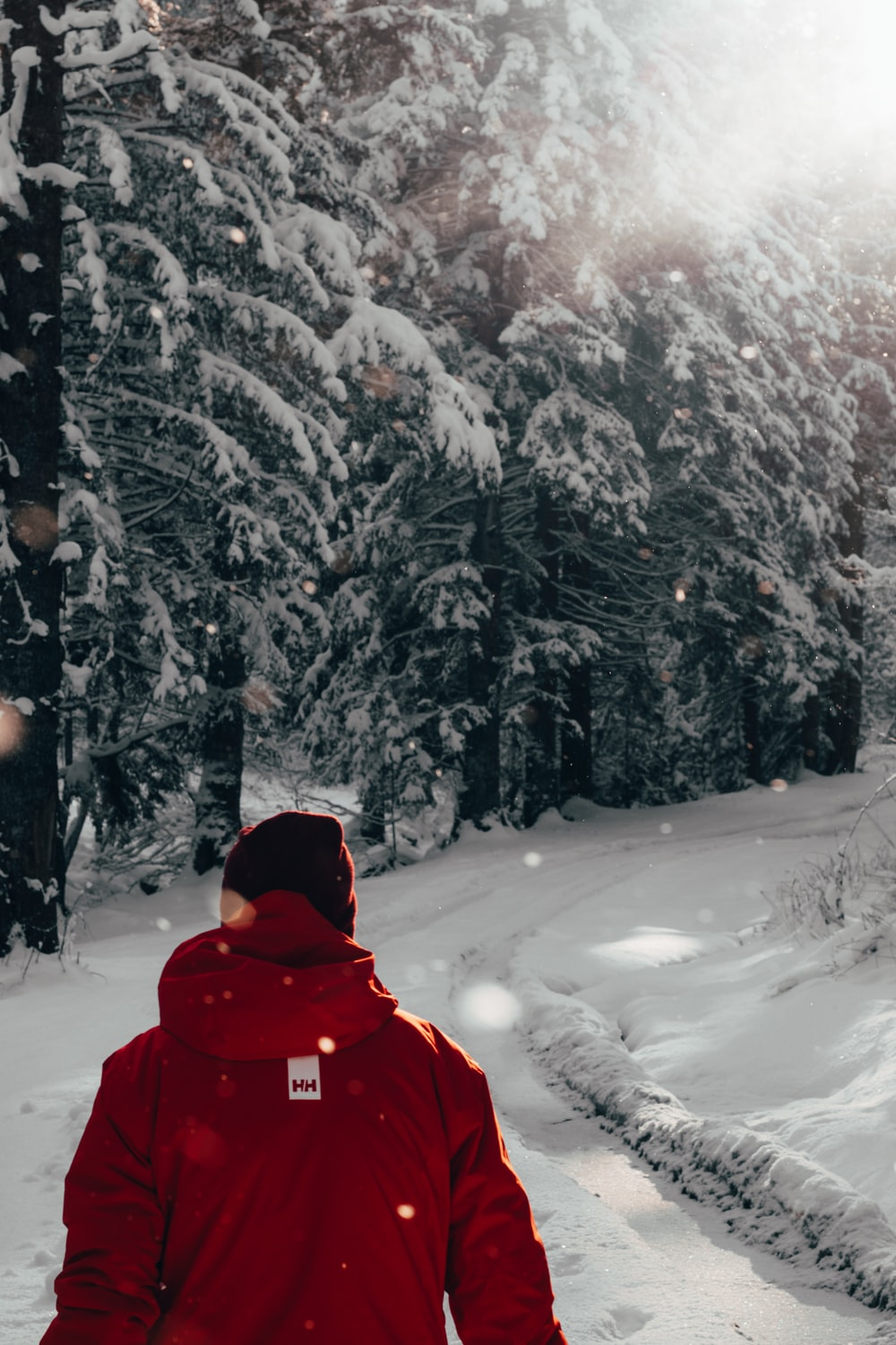 person wearing hooded jacket on snowfield near trees during day