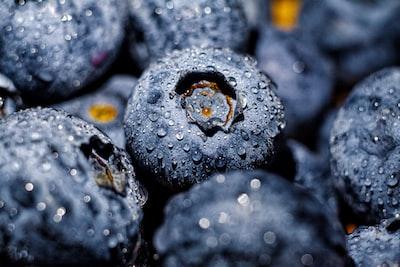 blueberry fruit blueberry teams background