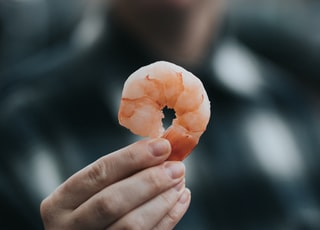 person holding a shrimp