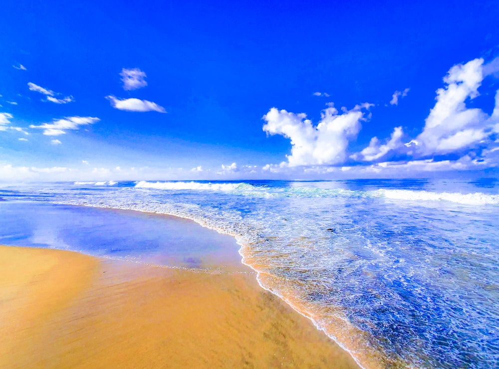 landscape photography of beach coast