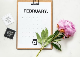 minimalist photography of a calendar and pink-petaled flower